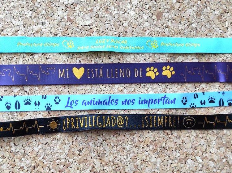 pulsera-de-tela-personalizada-tejida-asociacion-de-animales-privilegiados-siempre-2